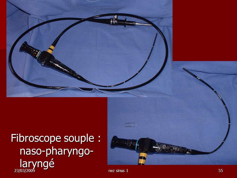 23/03/2009nez sinus 155 Fibroscope souple : naso-pharyngo- laryngé
