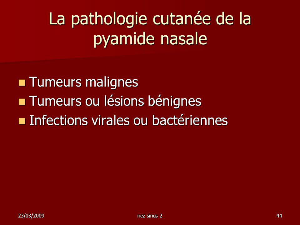 23/03/2009nez sinus 244 La pathologie cutanée de la pyamide nasale Tumeurs malignes Tumeurs malignes Tumeurs ou lésions bénignes Tumeurs ou lésions bé