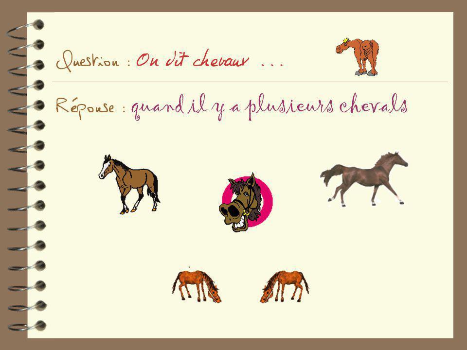 Question : On dit chevaux... Réponse : quand il y a plusieurs chevals