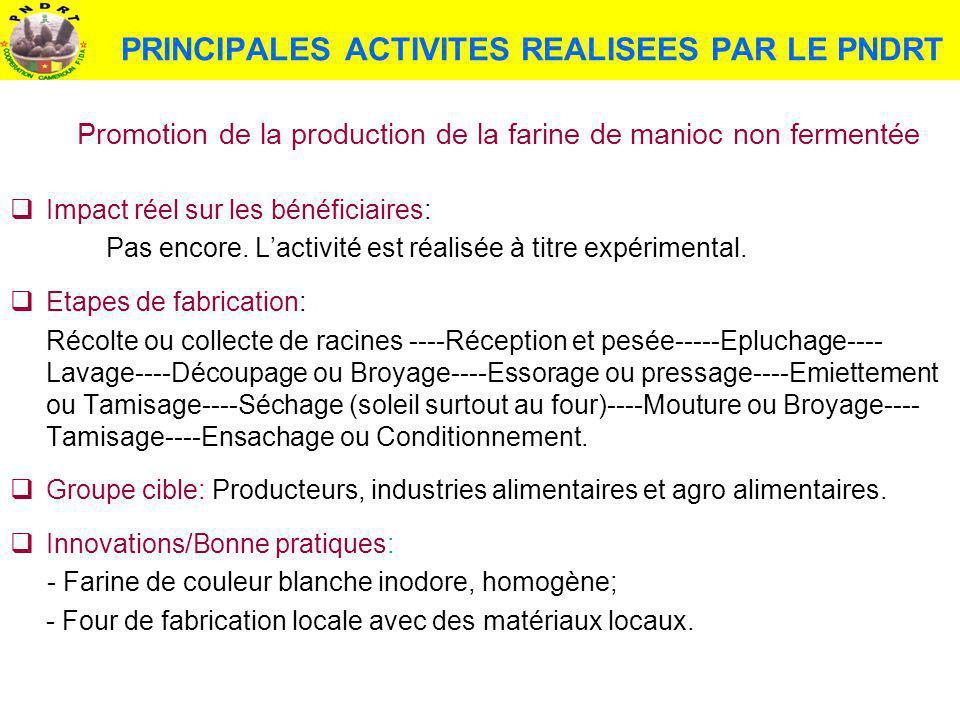 PRINCIPALES ACTIVITES REALISEES PAR LE PNDRT Promotion de la production de la farine de manioc non fermentée Impact réel sur les bénéficiaires: Pas en