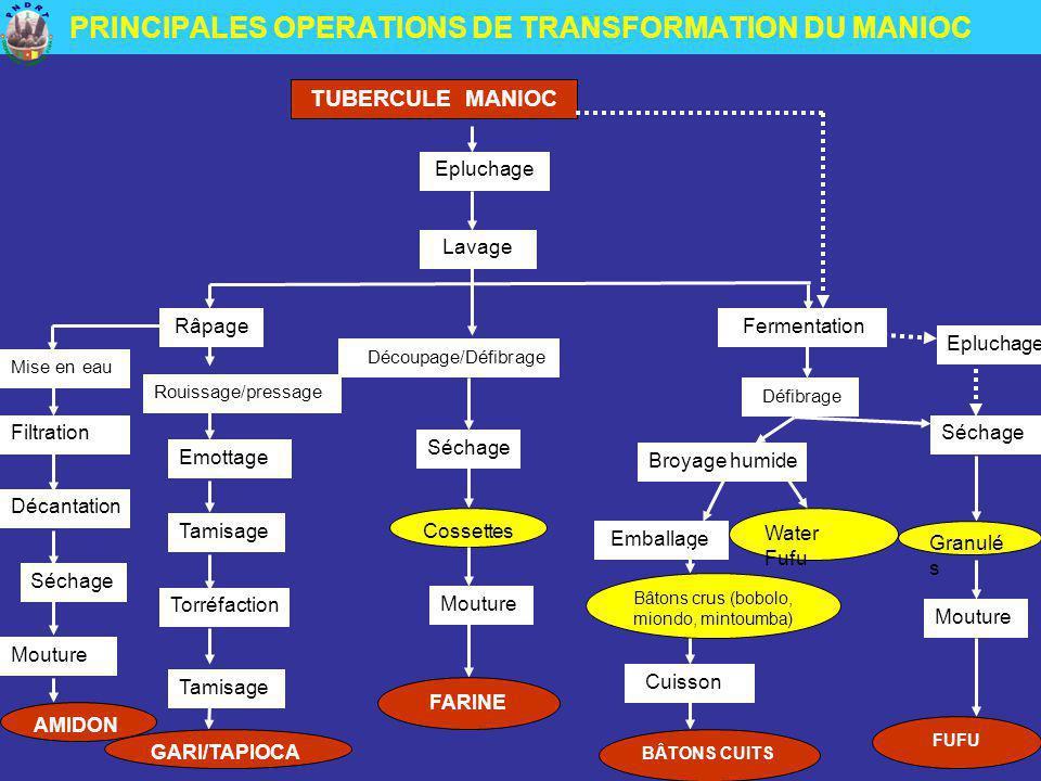 PRINCIPALES OPERATIONS DE TRANSFORMATION DU MANIOC TUBERCULE MANIOC Epluchage Lavage Découpage/Défibrage Séchage Cossettes Mouture FARINE Râpage Rouis