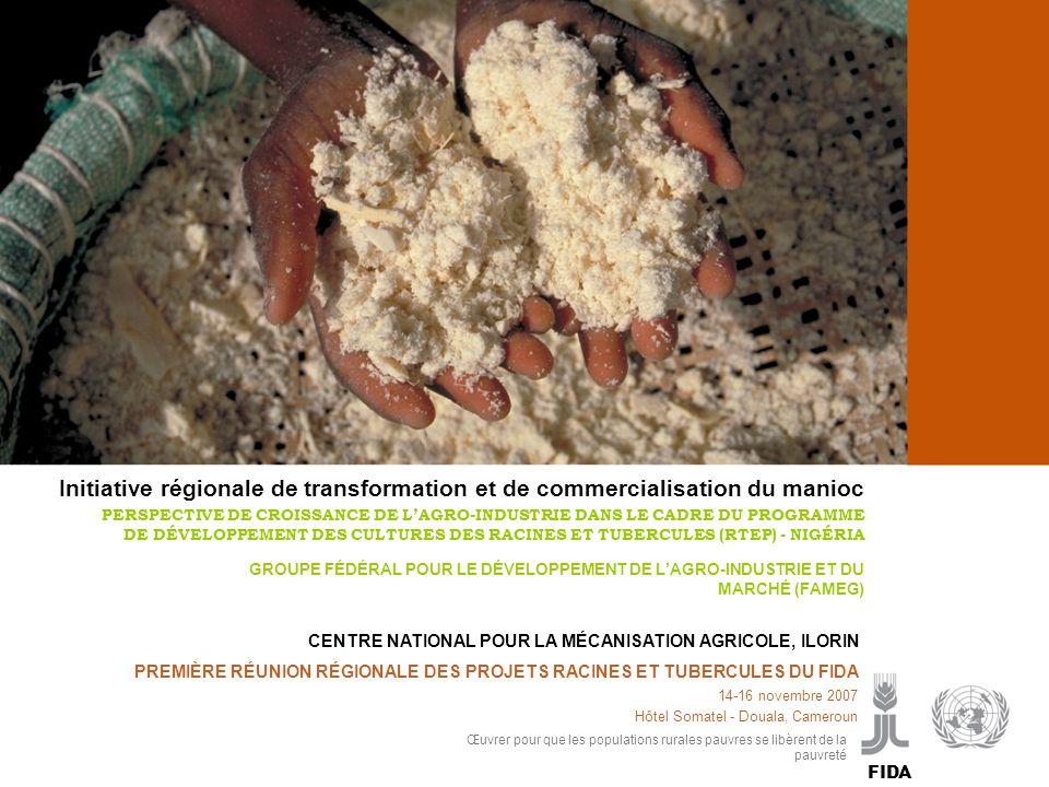 Cassava processing and marketing P PREMIÈRE RÉUNION RÉGIONALE DES PROJETS RACINES ET TUBERCULES DU FIDA 14-16 novembre 2007 Hôtel Somatel - Douala, Ca