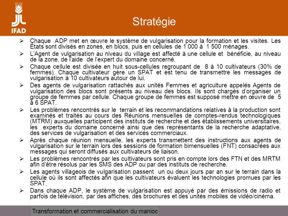Cassava processing and marketing Stratégie Chaque ADP met en œuvre le système de vulgarisation pour la formation et les visites.