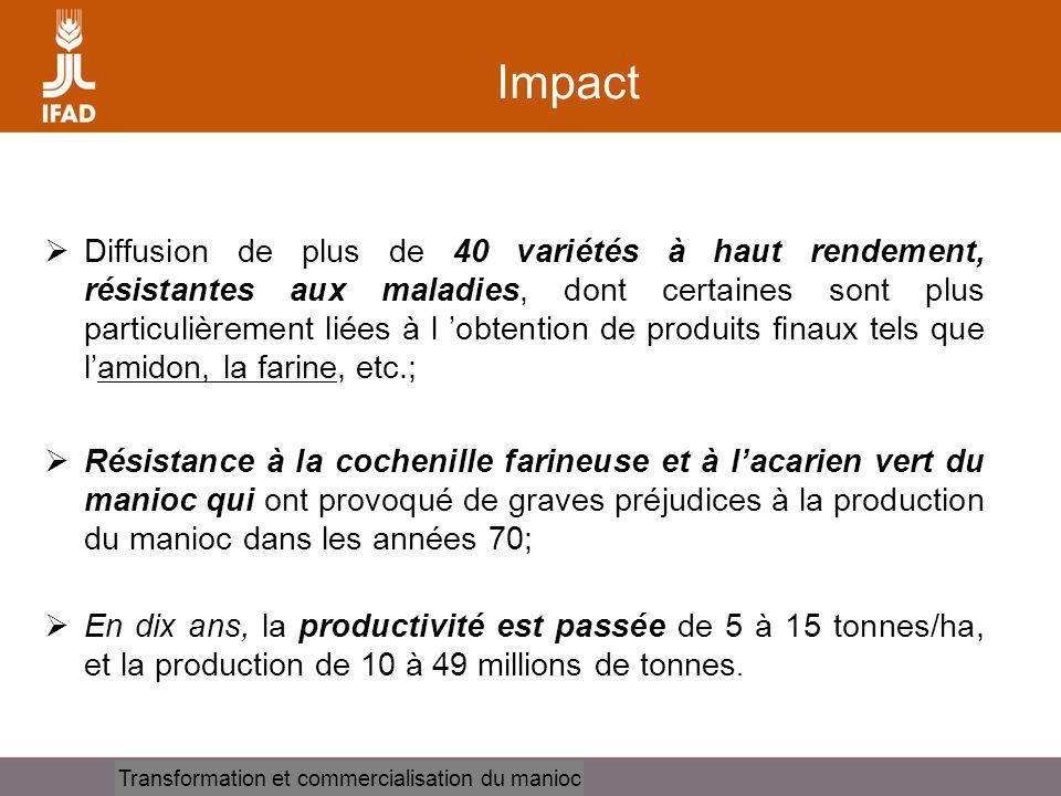 Cassava processing and marketing Impact Diffusion de plus de 40 variétés à haut rendement, résistantes aux maladies, dont certaines sont plus particulièrement liées à l obtention de produits finaux tels que lamidon, la farine, etc.; Résistance à la cochenille farineuse et à lacarien vert du manioc qui ont provoqué de graves préjudices à la production du manioc dans les années 70; En dix ans, la productivité est passée de 5 à 15 tonnes/ha, et la production de 10 à 49 millions de tonnes.