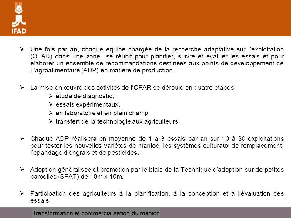 Cassava processing and marketing Une fois par an, chaque équipe chargée de la recherche adaptative sur lexploitation (OFAR) dans une zone se réunit pour planifier, suivre et évaluer les essais et pour élaborer un ensemble de recommandations destinées aux points de développement de l agroalimentaire (ADP) en matière de production.