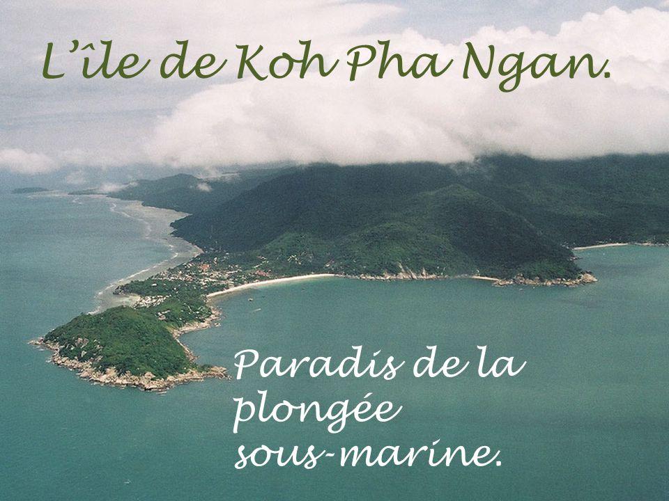 Lîle de Koh Phi Phi.