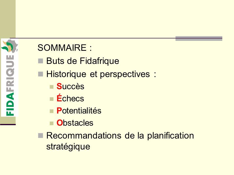SOMMAIRE : Buts de Fidafrique Historique et perspectives : Succès Échecs Potentialités Obstacles Recommandations de la planification stratégique
