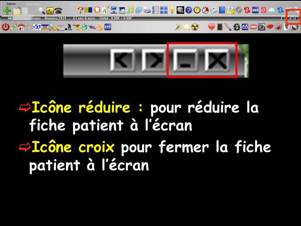 Icône réduire : pour réduire la fiche patient à lécran Icône croix pour fermer la fiche patient à lécran