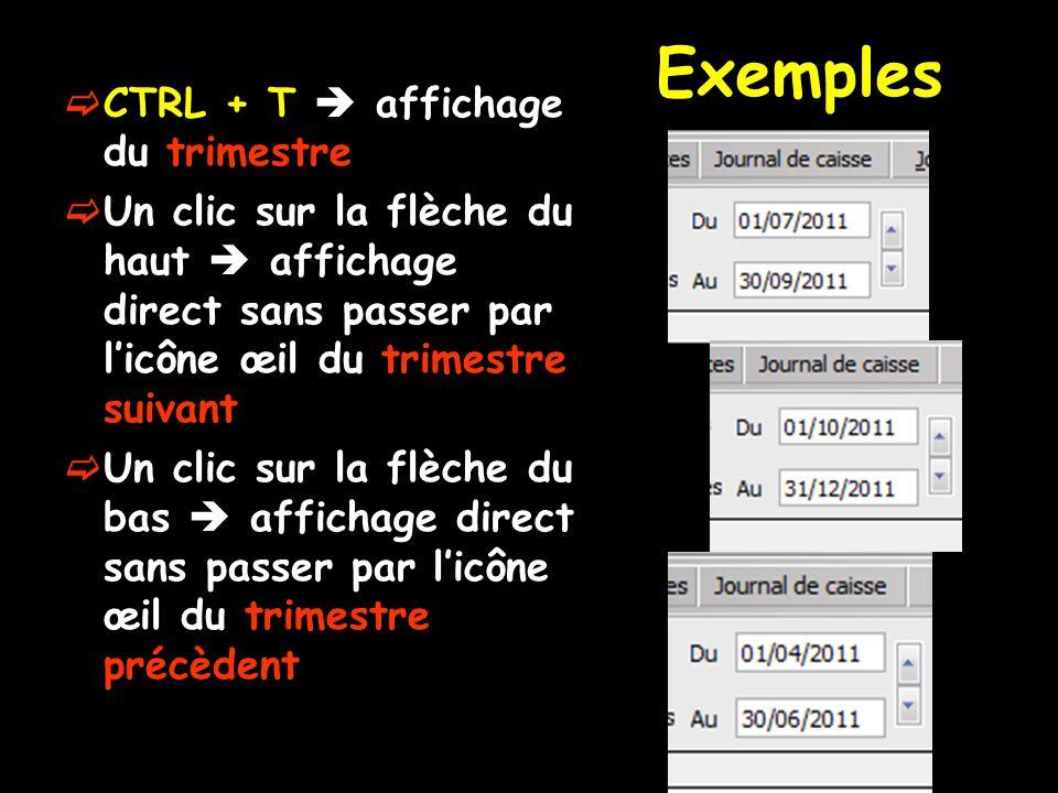 Exemples CTRL + T affichage du trimestre Un clic sur la flèche du haut affichage direct sans passer par licône œil du trimestre suivant Un clic sur la flèche du bas affichage direct sans passer par licône œil du trimestre précèdent