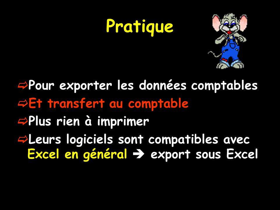 Pratique Pour exporter les données comptables Et transfert au comptable Plus rien à imprimer Leurs logiciels sont compatibles avec Excel en général export sous Excel