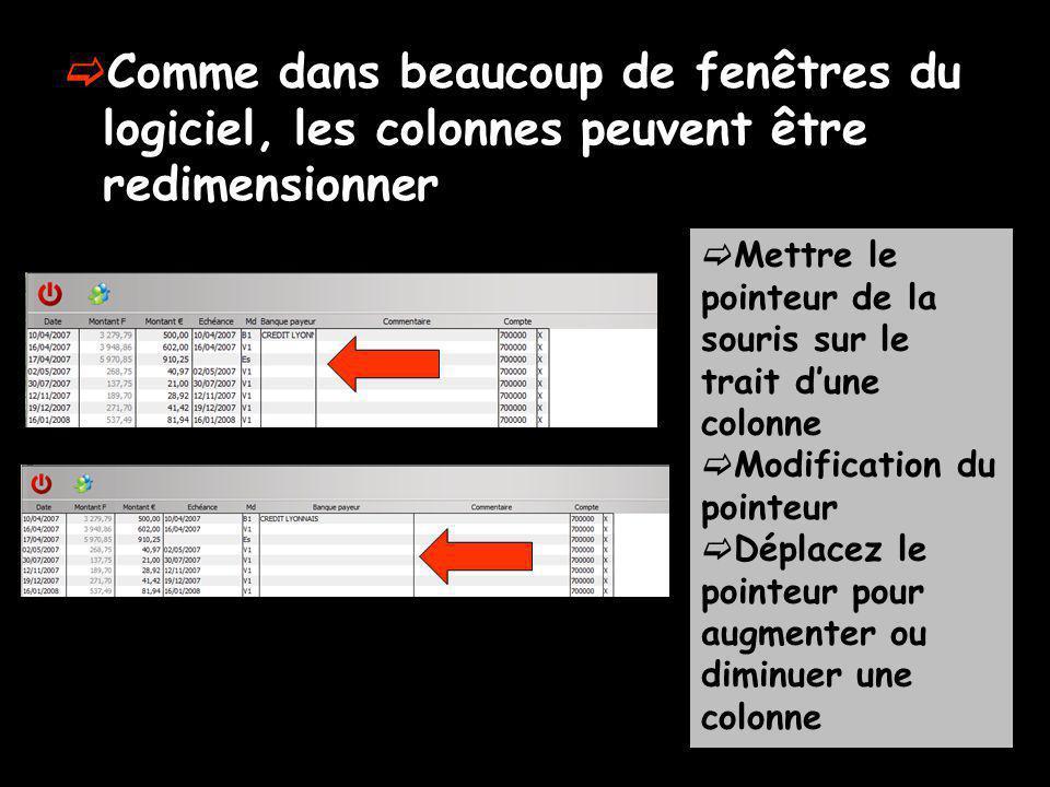Comme dans beaucoup de fenêtres du logiciel, les colonnes peuvent être redimensionner Mettre le pointeur de la souris sur le trait dune colonne Modification du pointeur Déplacez le pointeur pour augmenter ou diminuer une colonne