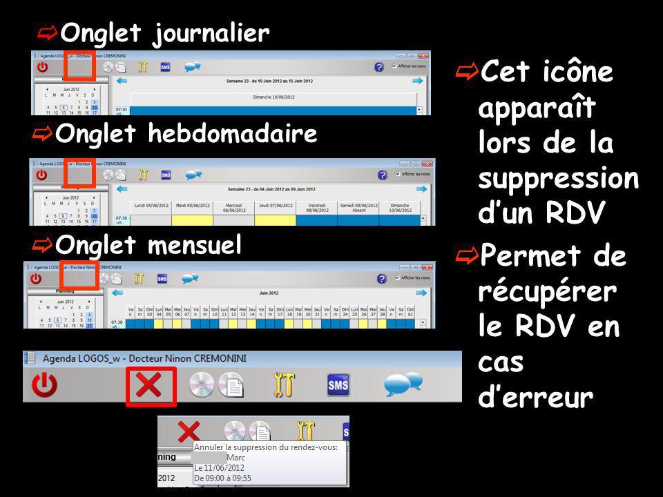 Onglet journalier Onglet hebdomadaire Onglet mensuel Cet icône apparaît lors de la suppression dun RDV Permet de récupérer le RDV en cas derreur