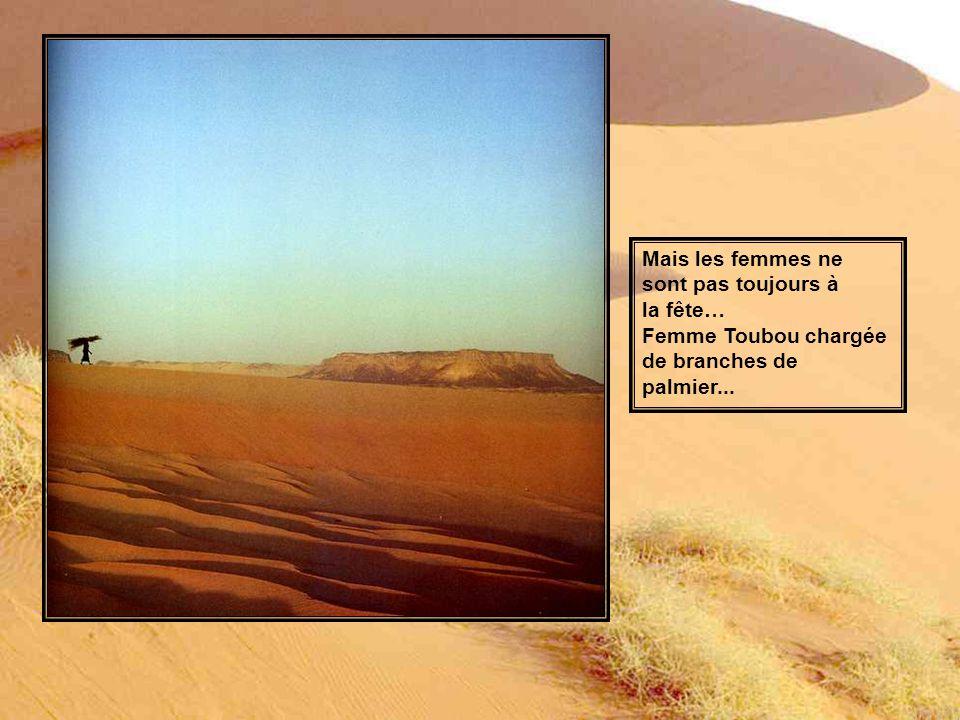 Femmes touarègues dans l oued Zagado, Massif de l Aïr, Niger.