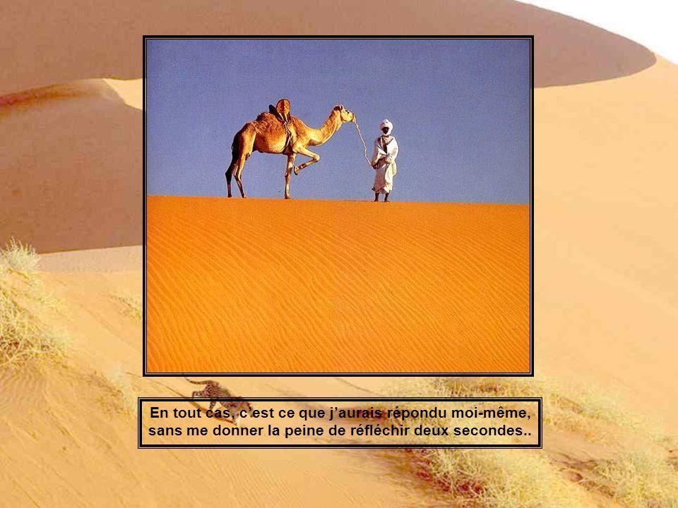 Si je vous demande : « Le Sahara, quest-ce que cela évoque, pour vous .