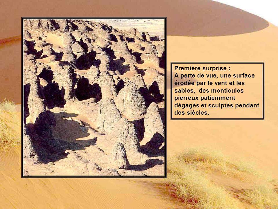 Première surprise : A perte de vue, une surface érodée par le vent et les sables, des monticules pierreux patiemment dégagés et sculptés pendant des siècles.