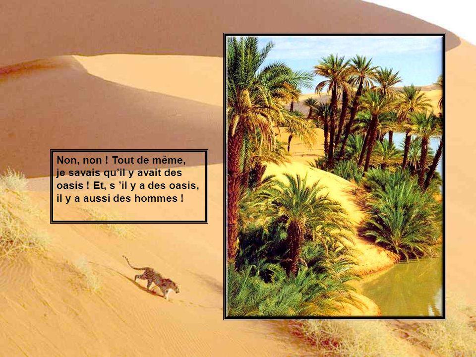 Non, non .Tout de même, je savais quil y avait des oasis .