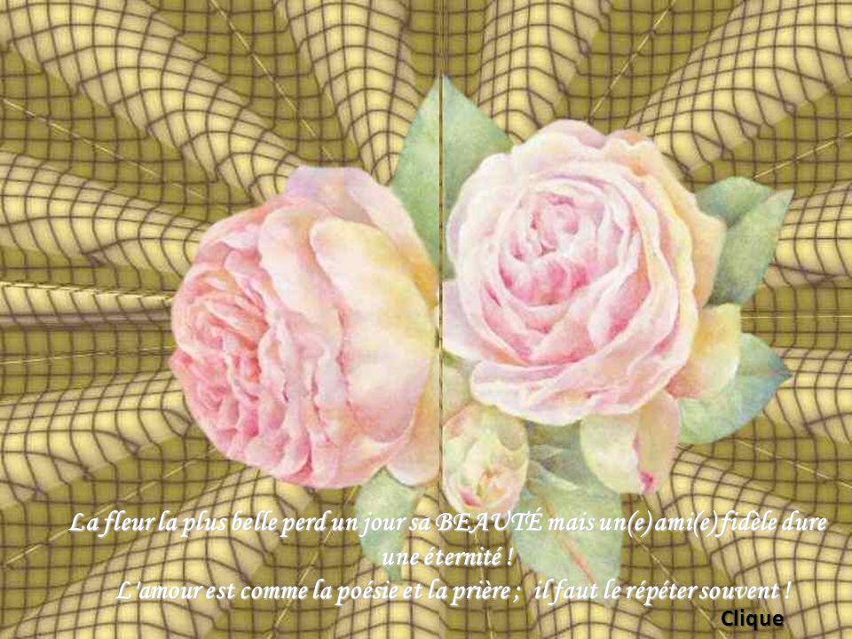 La fleur la plus belle perd un jour sa BEAUTÉ mais un(e) ami(e) fidèle dure une éternité .
