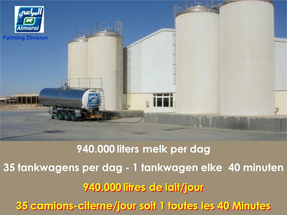 Totaal koeien - 15.800 Kalveren – 18.000 R.H.A. - 12.500 Botervet - 3.3 % Al Danah melkfabriek Al Danah: Ferme laitière Al Danah: Ferme laitière 15.80