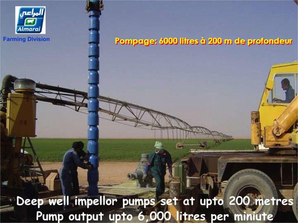 Pompage: 6000 litres à 200 m de profondeur Pompage: 6000 litres à 200 m de profondeur.................................