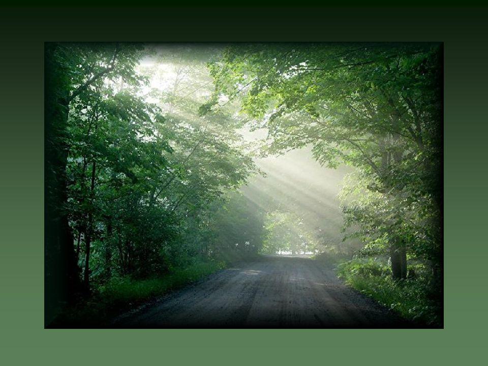 Parfois semée d épreuves difficiles Elle vient nous remettre sur le chemin Et elle fait qu on s arrête pour notre bien.