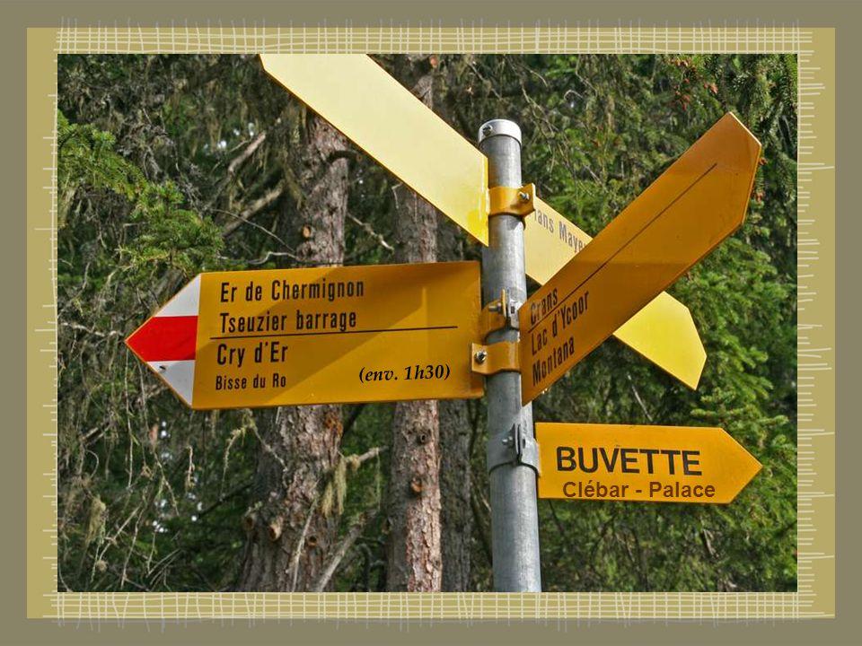 Le départ se situe à partir de Plans Mayens (Vs) sur Les Hauts de Crans .