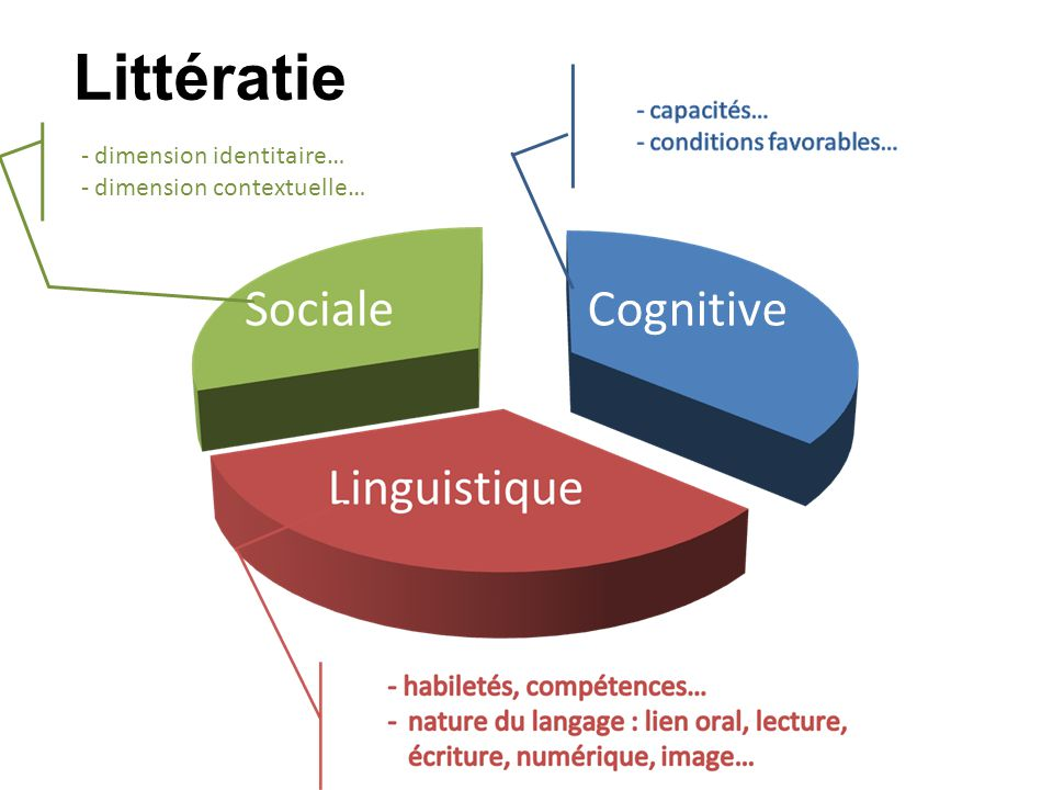 Littératie Cognitive - dimension identitaire… - dimension contextuelle…