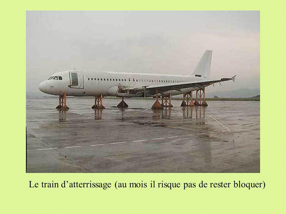 Réalisé pour diaporamas-a-la-con.com Le train datterrissage (au mois il risque pas de rester bloquer)