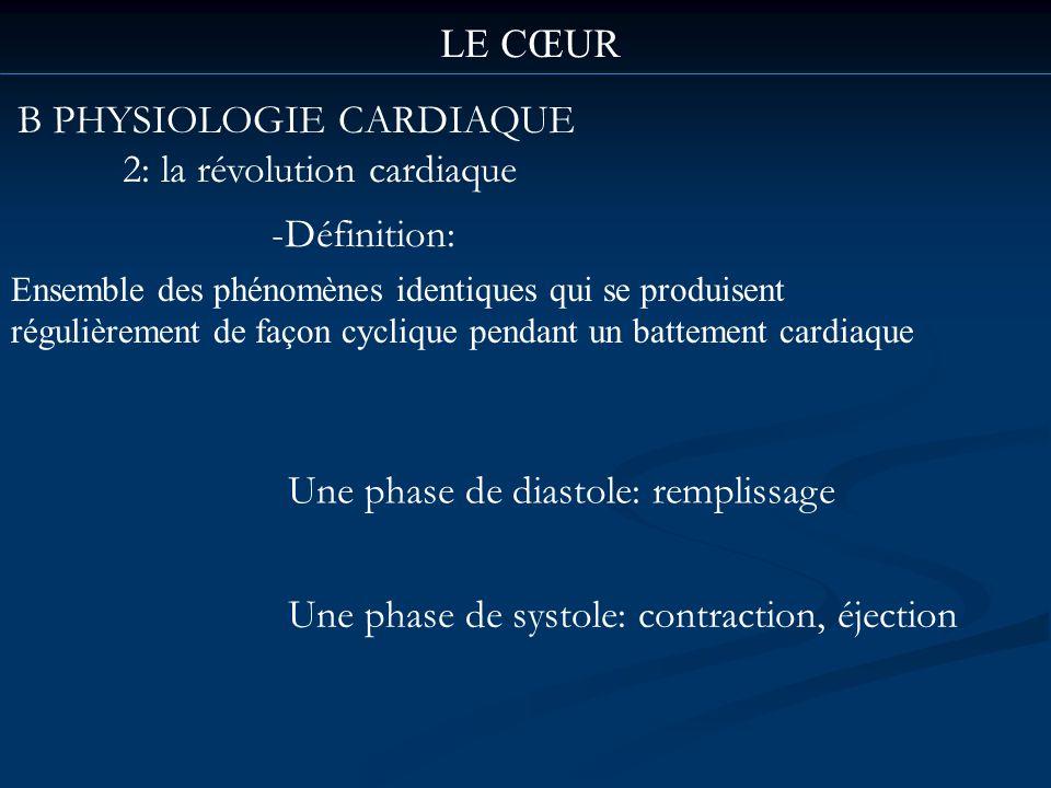 B PHYSIOLOGIE CARDIAQUE 2: la révolution cardiaque LE CŒUR -Définition: Ensemble des phénomènes identiques qui se produisent régulièrement de façon cy