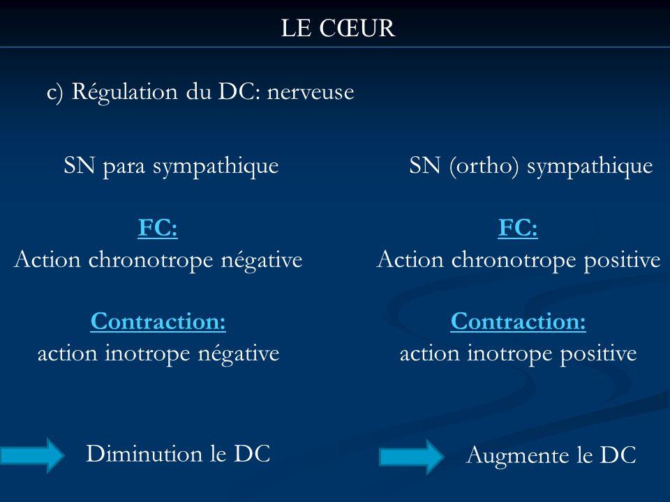 c) Régulation du DC: nerveuse LE CŒUR SN para sympathique FC: Action chronotrope négative Contraction: action inotrope négative Diminution le DC SN (o