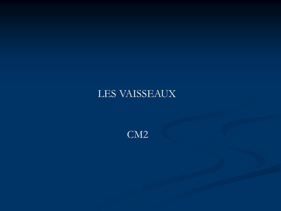 LES VAISSEAUX CM2