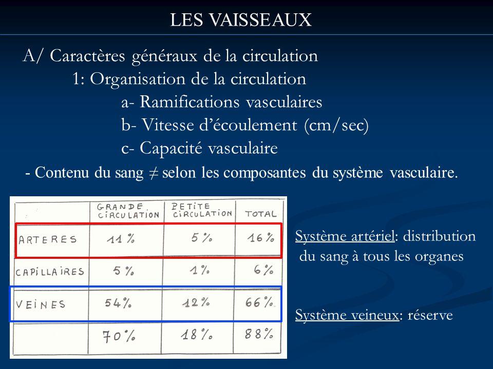 LES VAISSEAUX A/ Caractères généraux de la circulation 1: Organisation de la circulation a- Ramifications vasculaires b- Vitesse découlement (cm/sec)