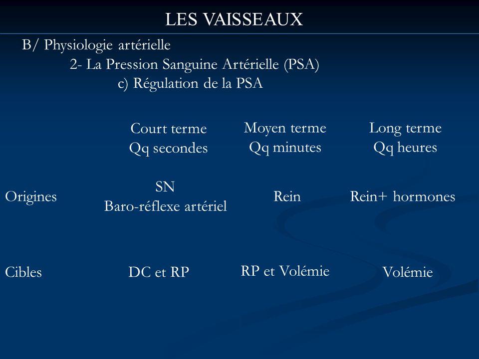 LES VAISSEAUX B/ Physiologie artérielle 2- La Pression Sanguine Artérielle (PSA) c) Régulation de la PSA Court terme Qq secondes Moyen terme Qq minute