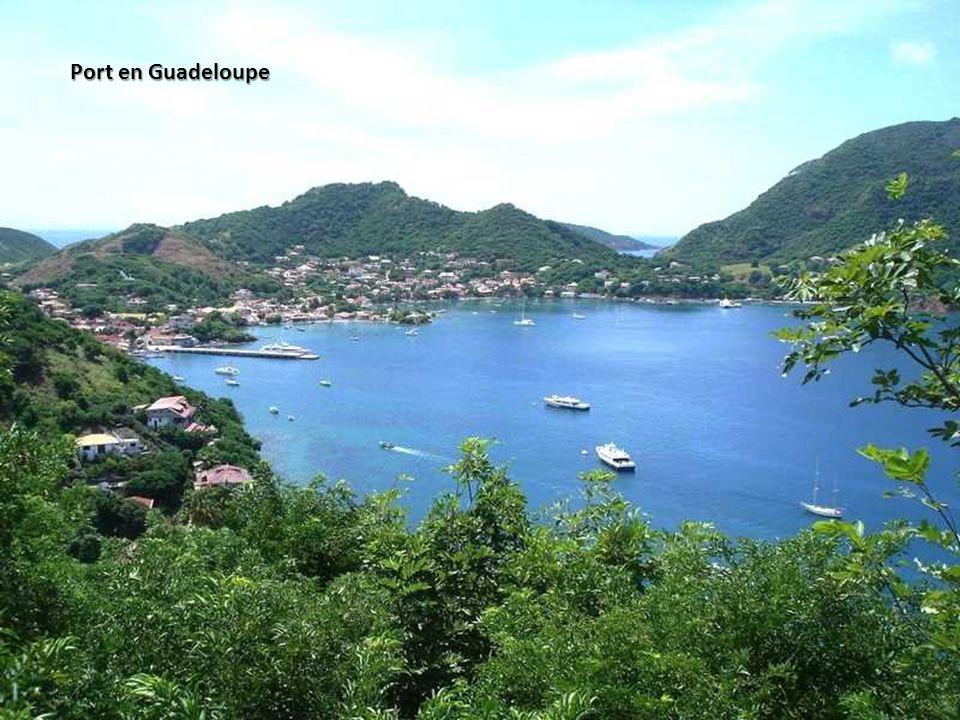 Port en Guadeloupe