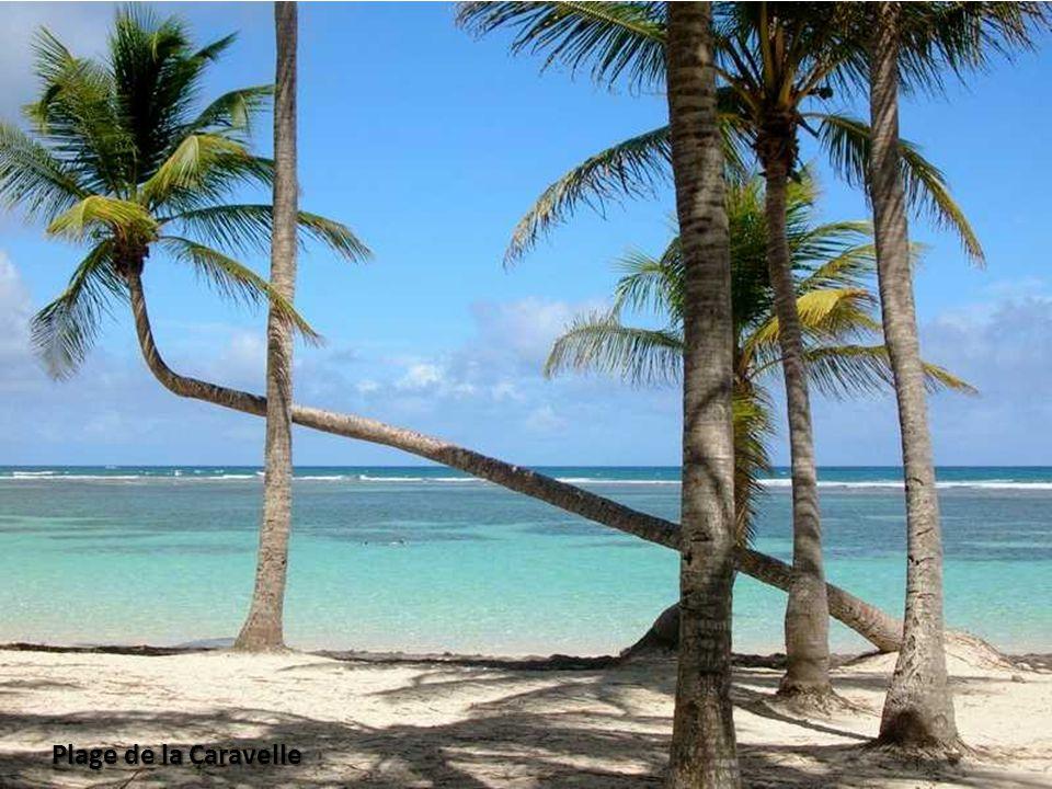 Plage de Babin Morne à Leau en Guadeloupe
