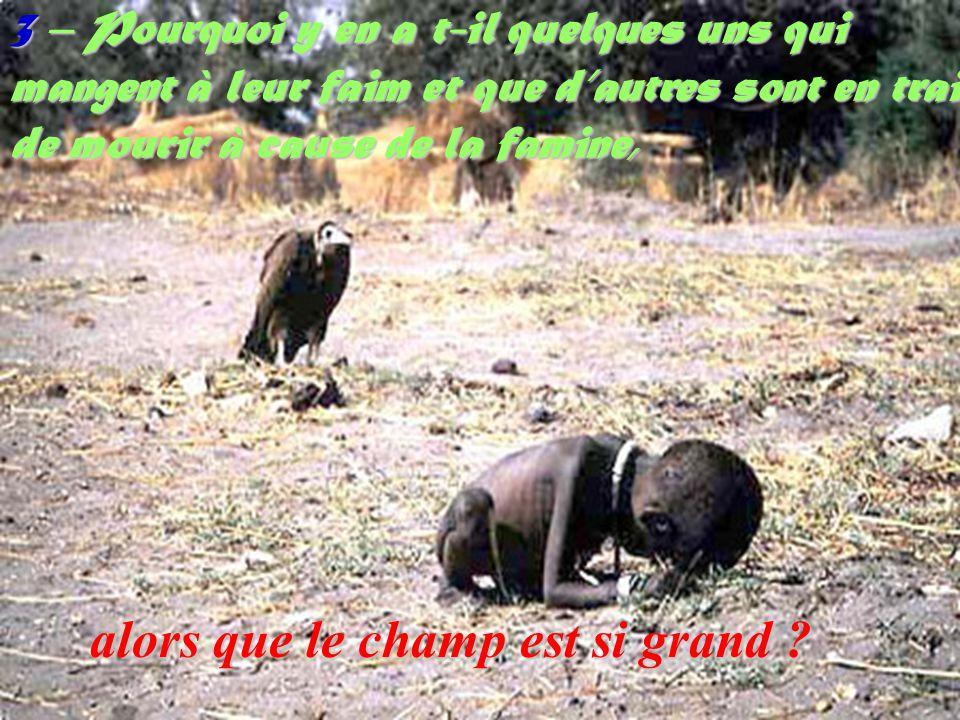 3 – Pourquoi y en a t-il quelques uns qui mangent à leur faim et que dautres sont en train de mourir à cause de la famine, alors que le champ est si grand ?