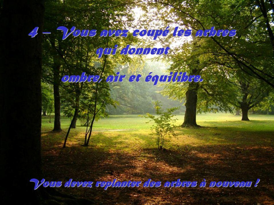 4 – Vous avez coupé les arbres qui donnent ombre, air et équilibre.