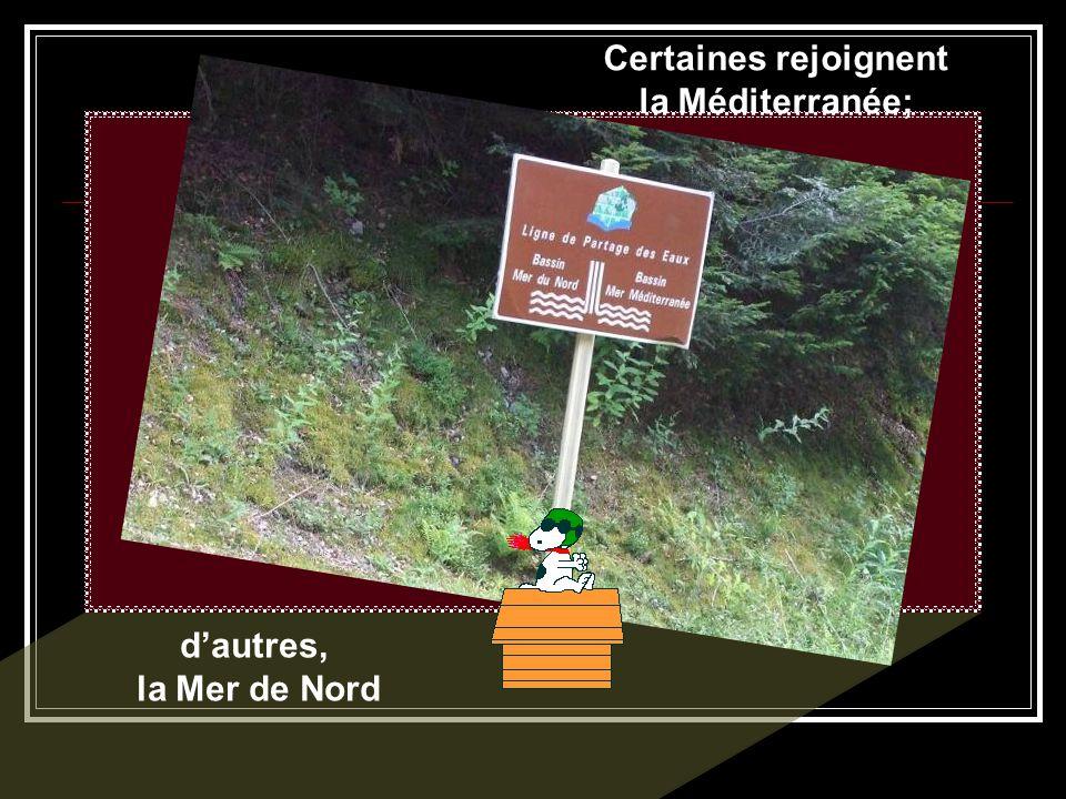 Sur les hauteurs (près du Petit Beaulieu), de nombreuses sources.