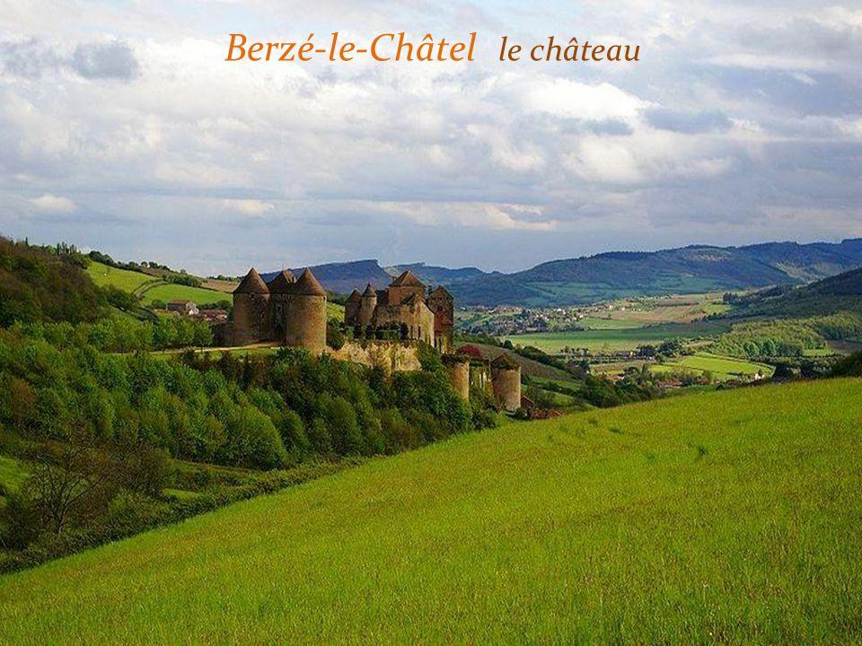 Pierreclos le château