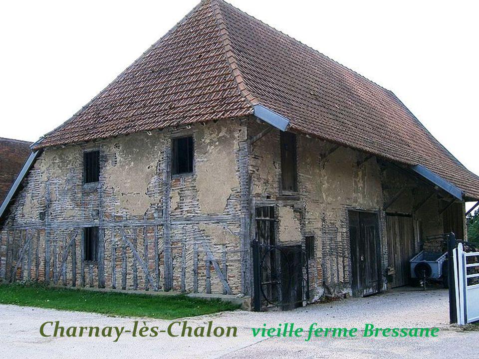 . Saint-Martin-sous-Montaigu vignes en côte Chalonnaise et le village