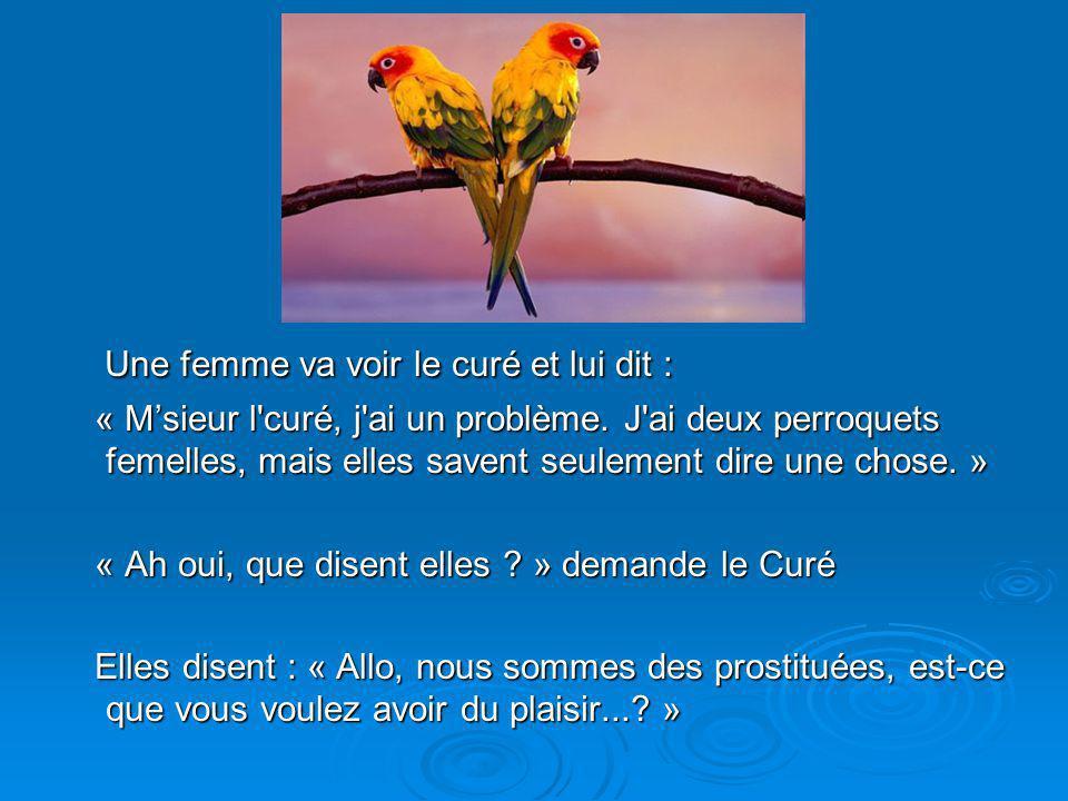 Diaporama PPS réalisé pour http://www.diaporamas-a-la-con.com Une femme va voir le curé et lui dit : Une femme va voir le curé et lui dit : « Msieur l curé, j ai un problème.