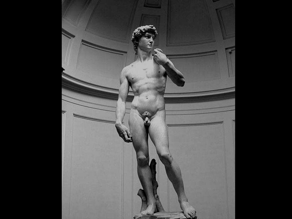 Ce David sculpté par Michel Ange entre 1501 et 1504 est une commande de la Coopérative des Commerçants de la rue de Florence. Il employa un bloc de ma