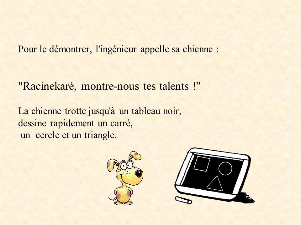 Un ingénieur, un comptable, un chimiste, un informaticien et un fonctionnaire français se vantent d'avoir chacun un chien merveilleux..