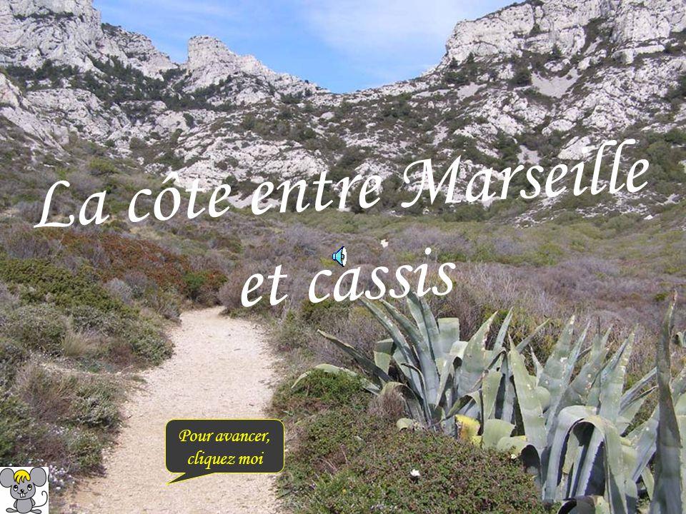 La côte entre Marseille et cassis Pour avancer, cliquez moi