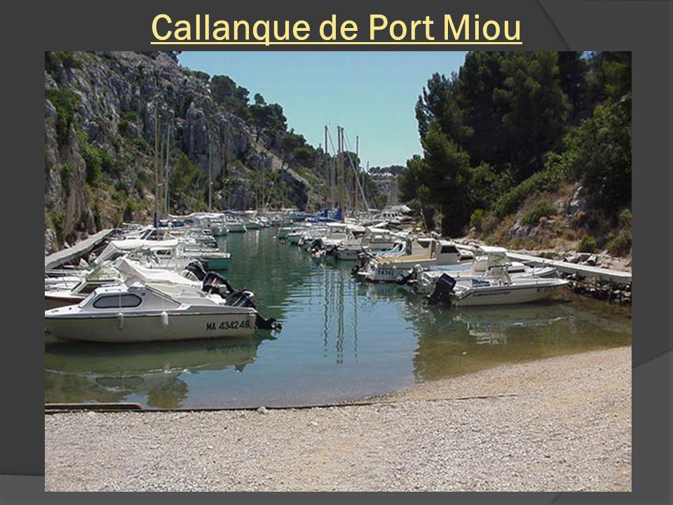 Port Miou et son port