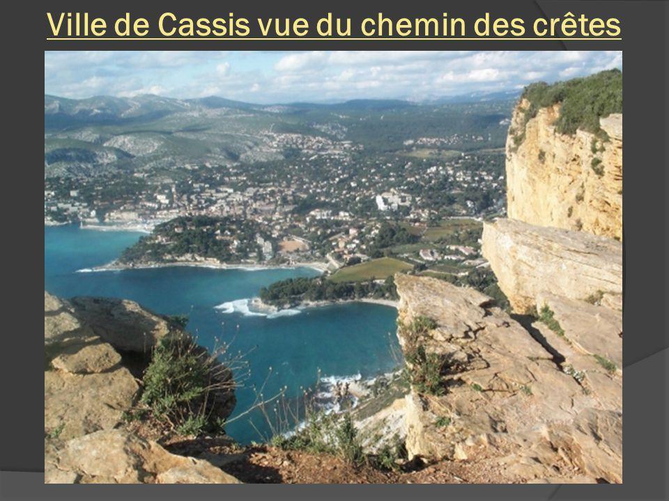 Callanque de Port Miou