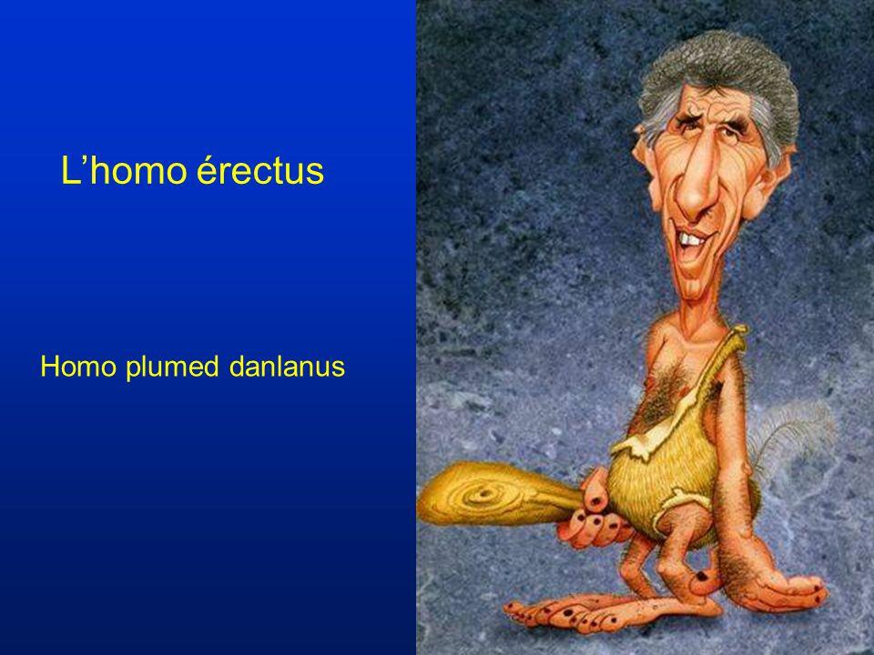 La congelée royale Homo anti erectus