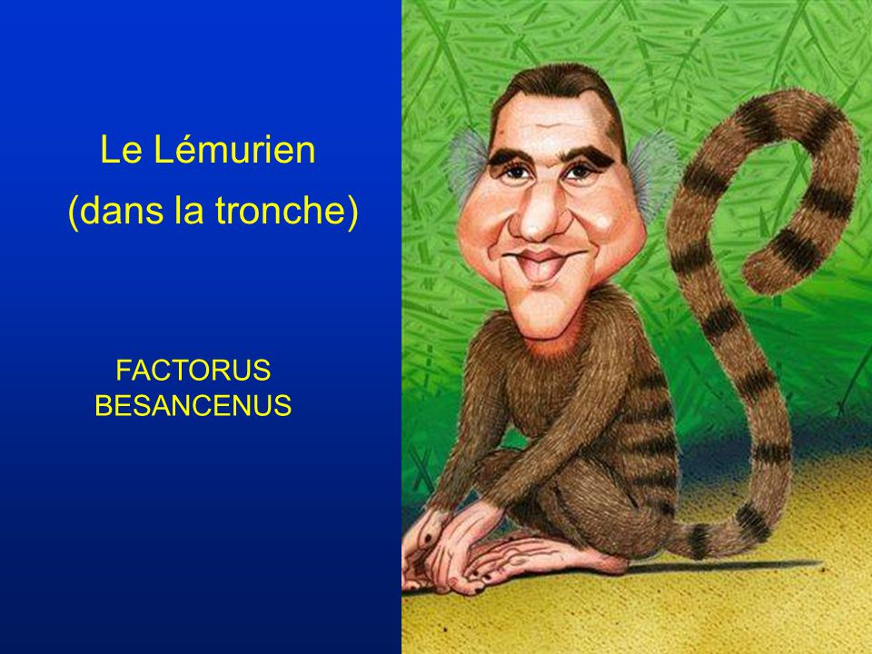 Le Lémurien (dans la tronche) FACTORUS BESANCENUS
