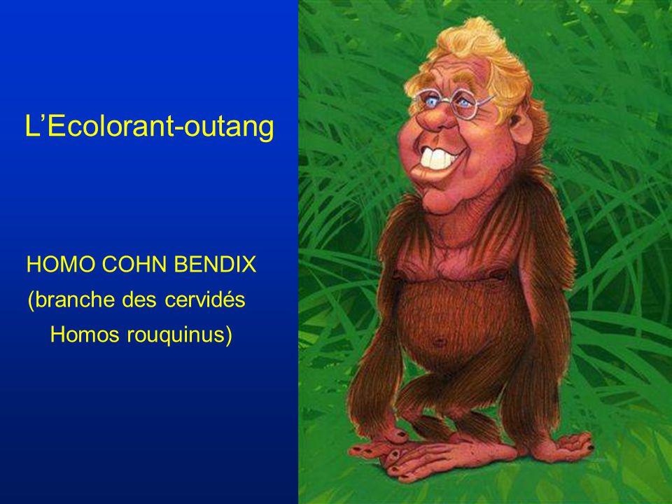 HOMO COHN BENDIX (branche des cervidés Homos rouquinus) LEcolorant-outang