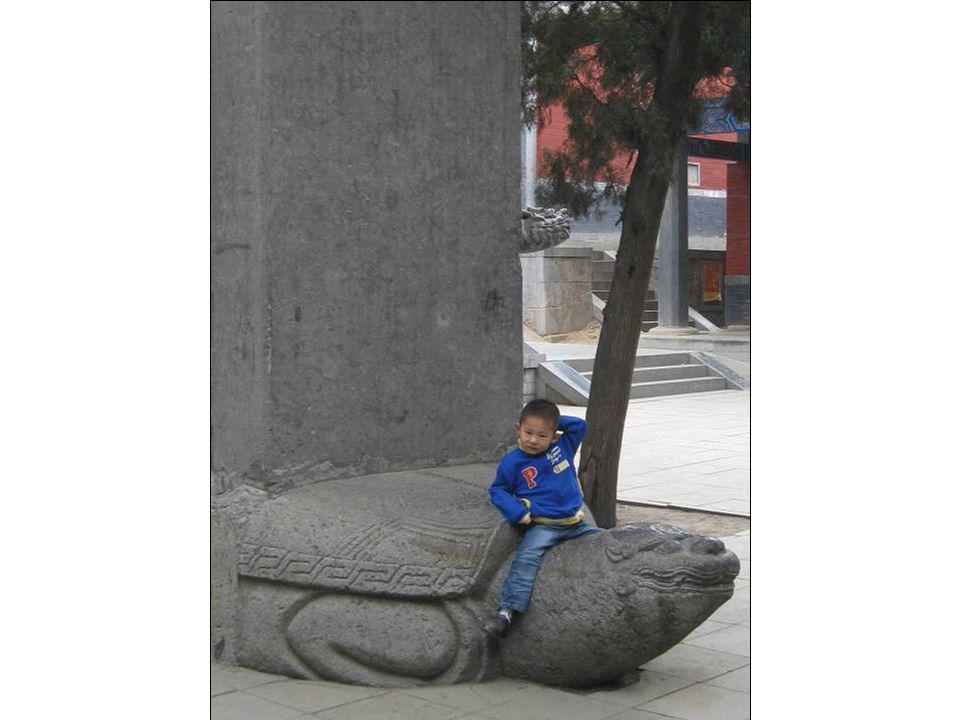Attention ! Ce nest pas une tortue ordinaire.. ! Cest Bixi, le 1er fils du Dragon !