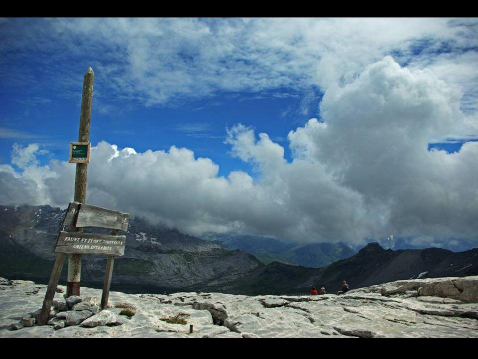 Toujours aux grandes Platières, les nuages avaient décidé de cacher pudiquement le mont-blanc ce jour là .